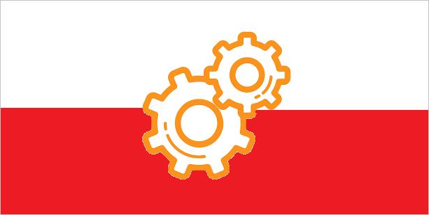 Carsharing po polsku… w 100% po polsku.